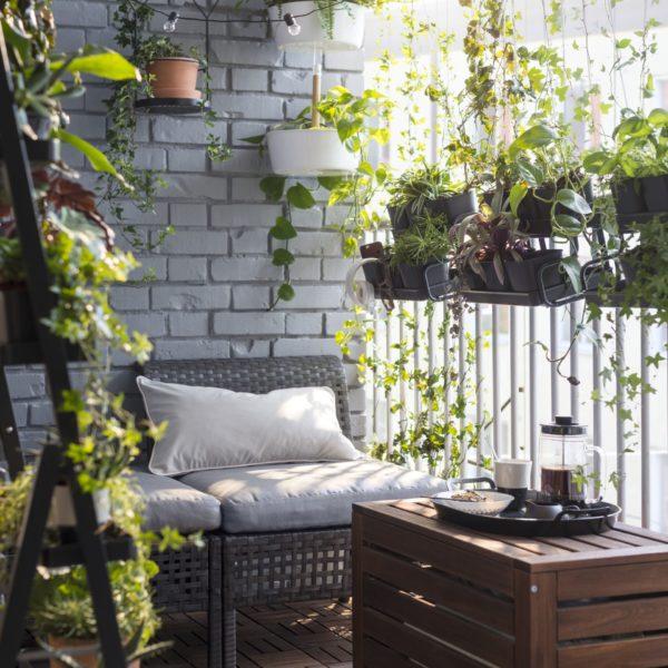 W okresie letnim na balkonie świetnie będą się czuły rośliny tropikalne. Warto wynieść je z domu. Widoczne na zdjęciu osłonki i meble dostępne są w sklepach Ikea. www.ikea.com/pl