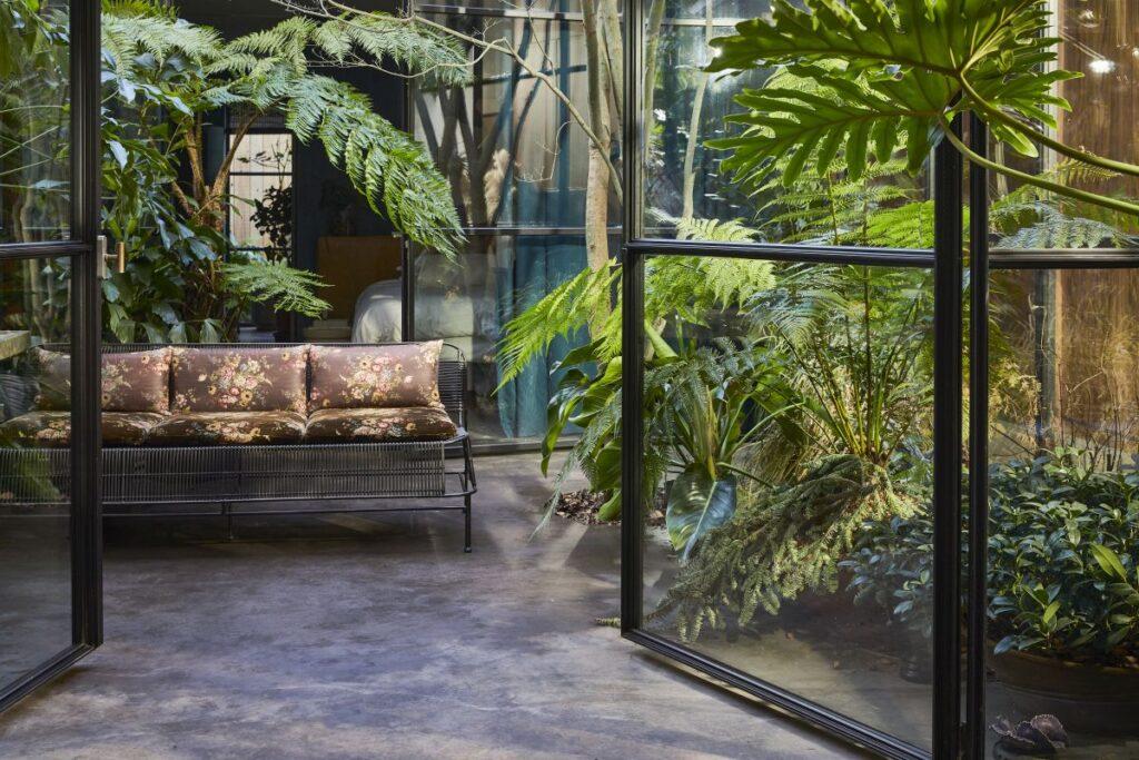 rośliny w domu