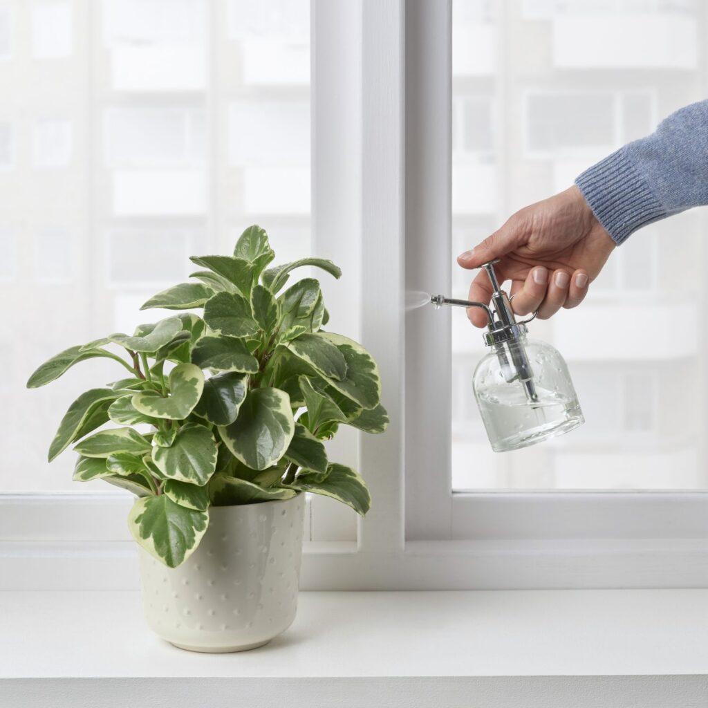 zraszacze do roślin